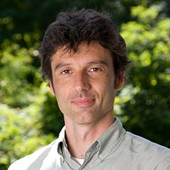 Alessandro Baccini
