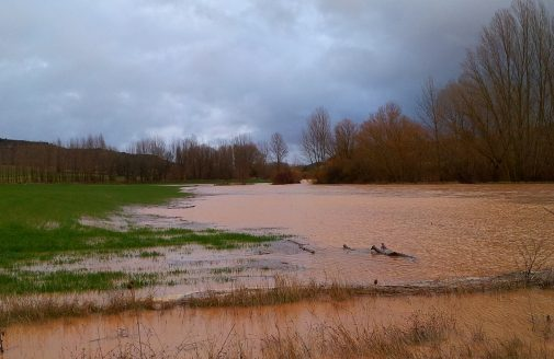 Field flooded from river overflowing its banks.