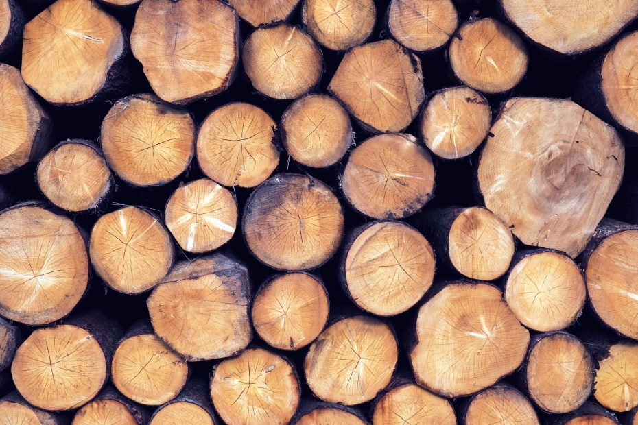 Stock image of cut wood logs.