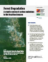 Forest Degradation pdf cover