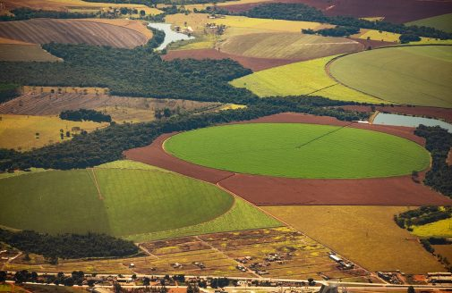 Aerial view of crop fields in Brazil