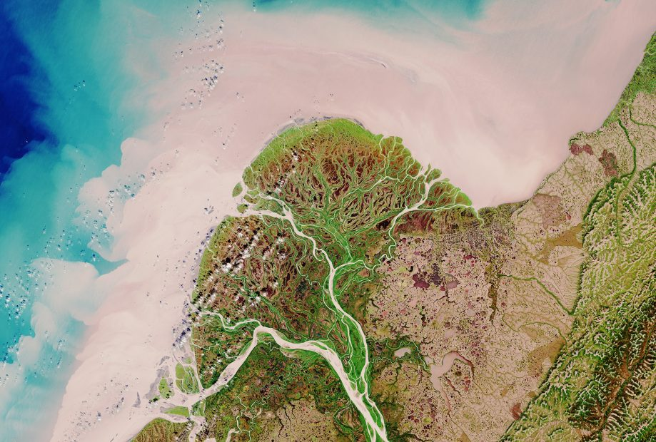 Image of the Yukon River Delta