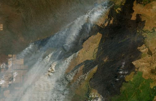 satellite image of fires' smoke in Bolivia.
