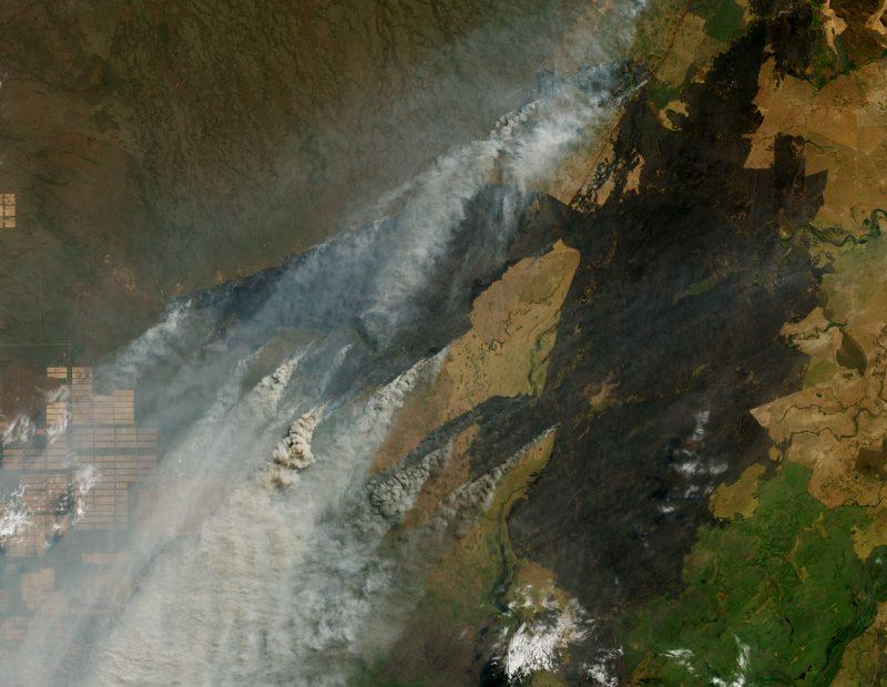 satellite image of fires' smoke in Bolivia.
