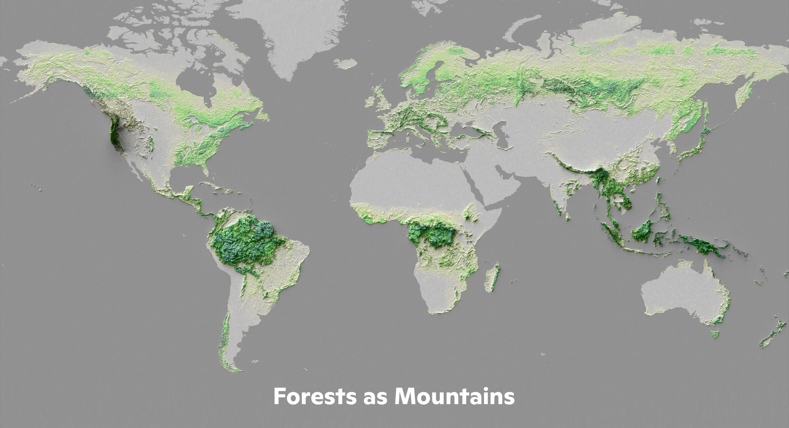 Forests as mountains illustrates where carbon is stored.