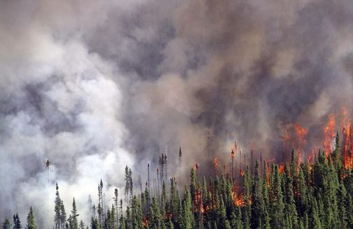 Spruce fire in Kenai National Wildlife Refuge
