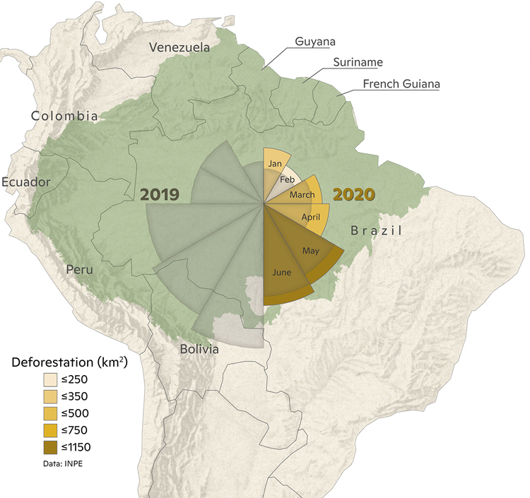 Amazon deforestation map for January through June 2020.