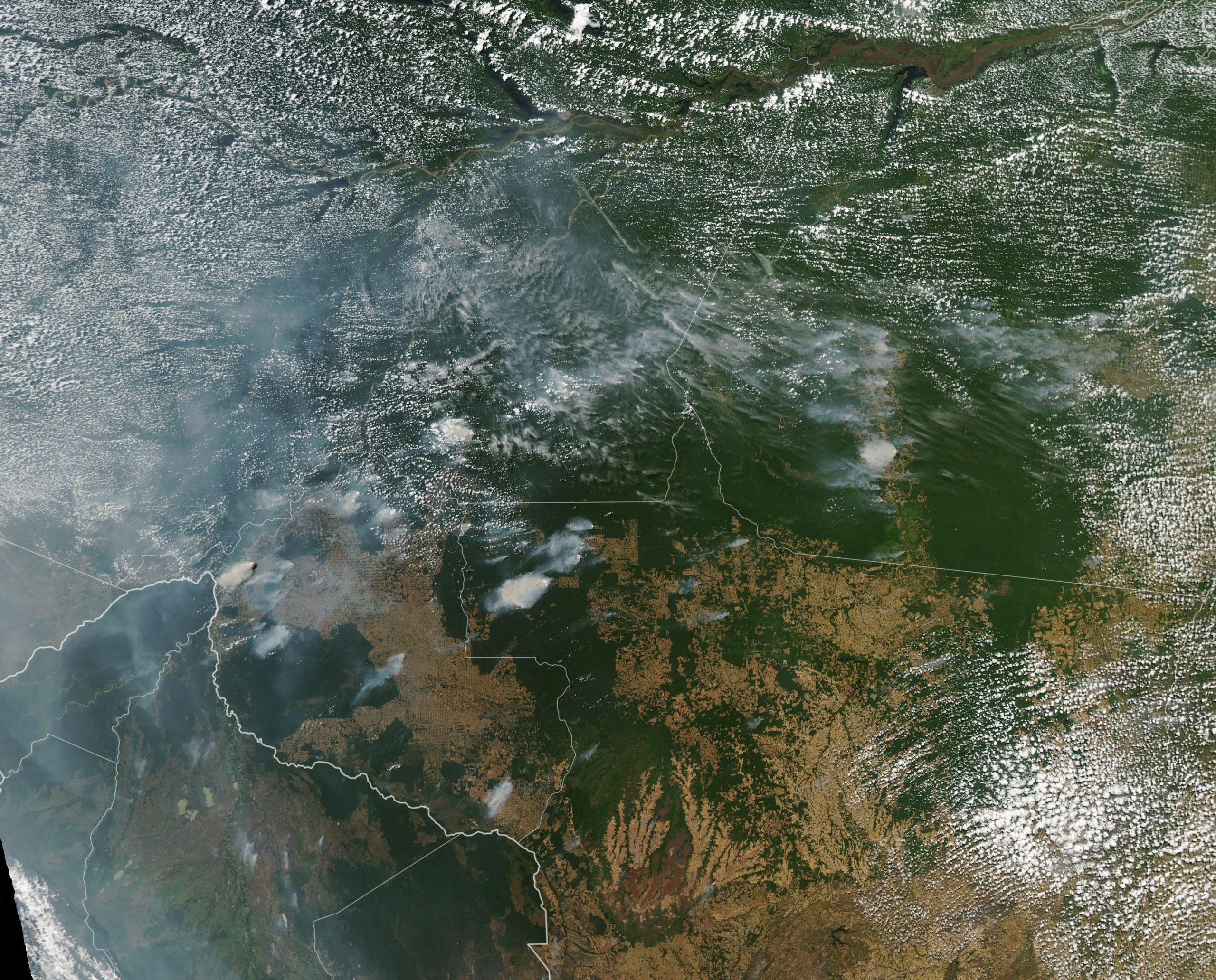 Satellite photo of fires in Brazil. NASA Earth Observatory