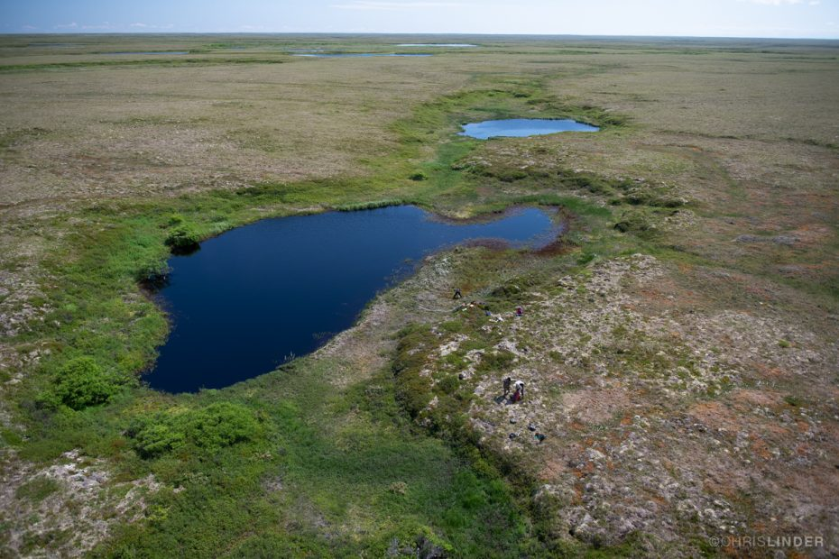 Aerial view of Arctic tundra in summer.