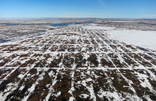 Seismic Survey vehicle tracks in the Arctic National Wildlife Refuge