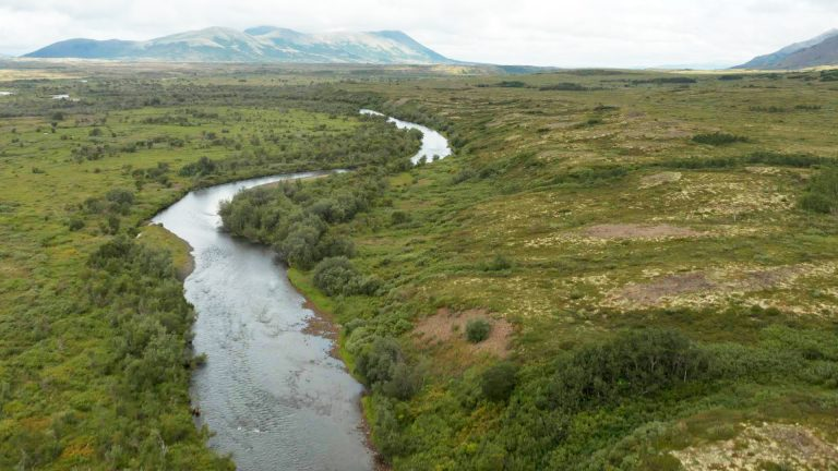 Kwethluk River