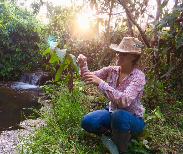 Marcia Sampling in the Amazon