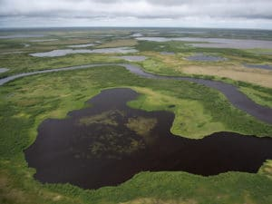 Aerial view of Arctic tundra in summer - photo by Chris Linder