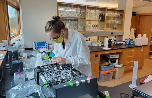 Lindsay Scott working in the Woodwell lab