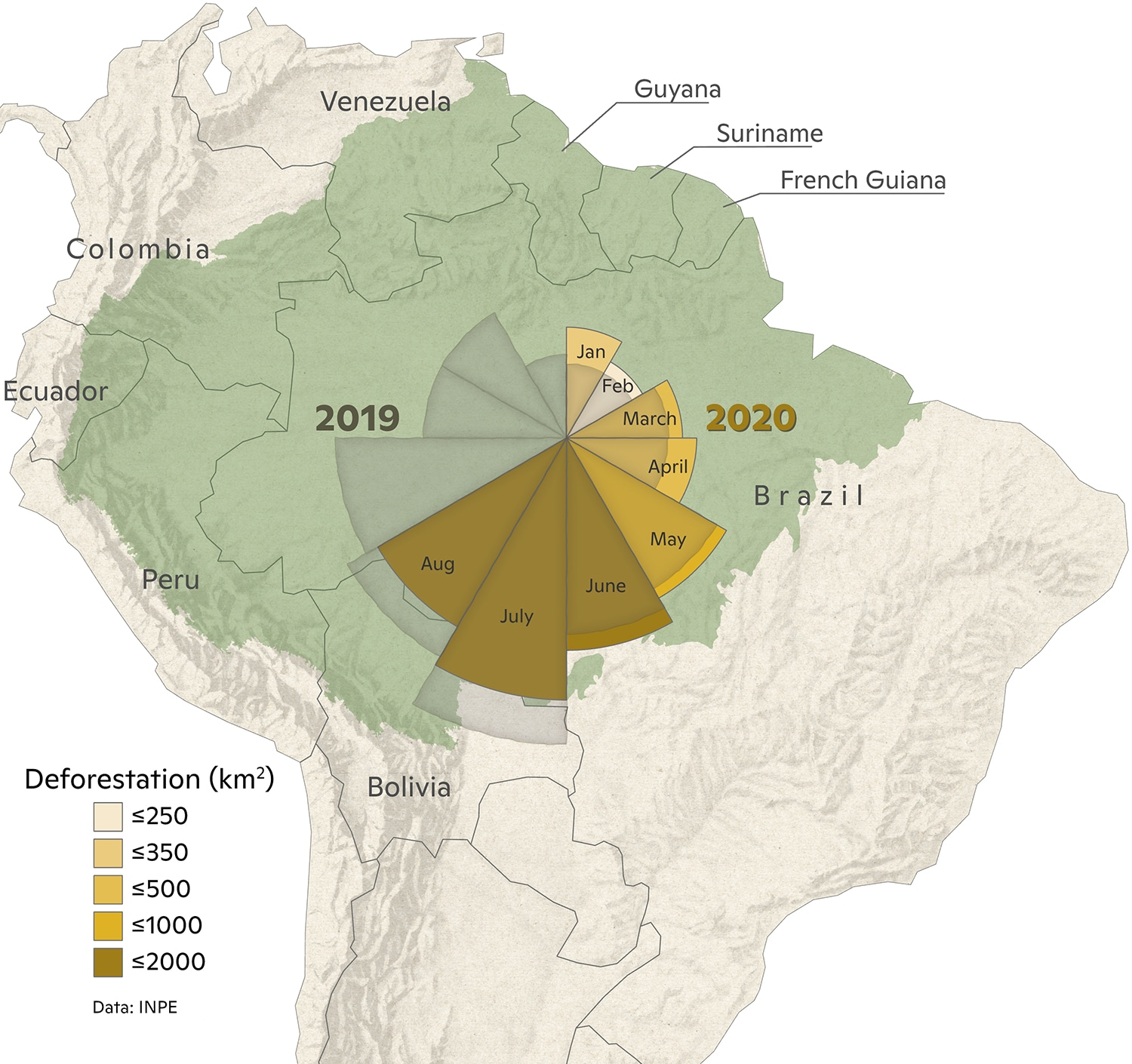 Map with coxcomb graph of 2020 deforestation January-August