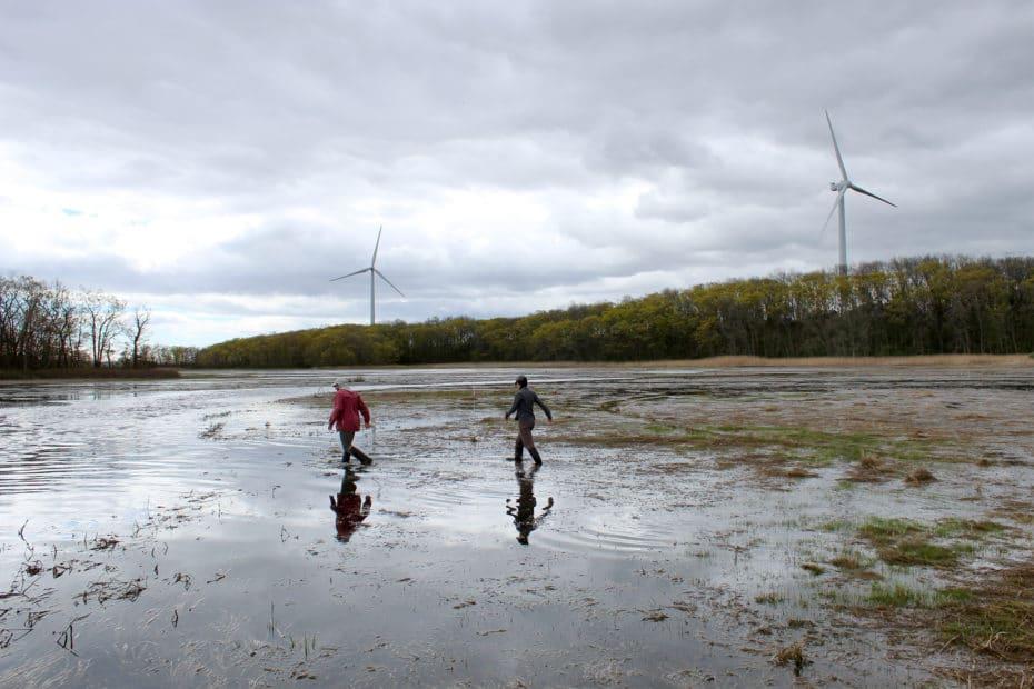 Great Marsh at Plum Island