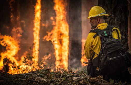 Oregon wildfire forest fire firefighter