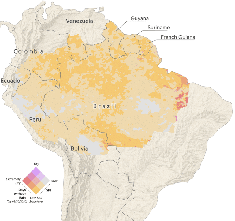 2020 Amazon rainfall map through August