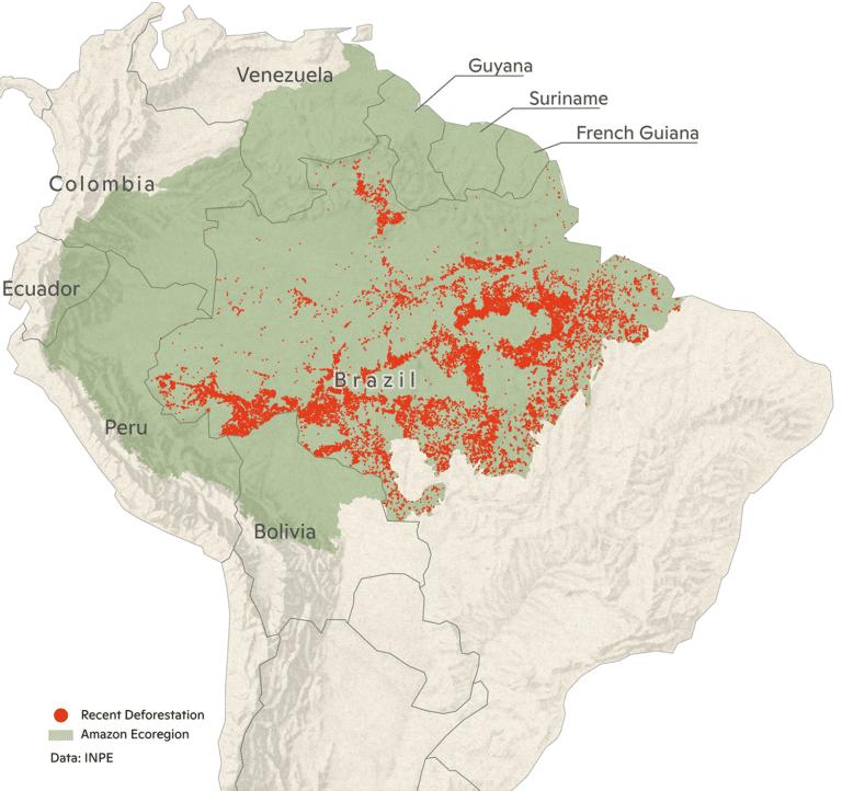 2020 Amazon map of recent deforestation