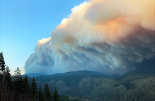 West coast forest fire