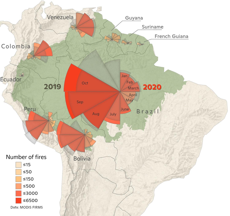 graph of 2020 Amazon fires through October