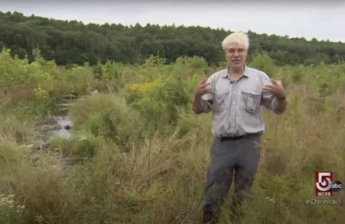 Chris Neill interviewed at a restored cranberry bog.