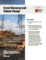 Forest Bioenergy and Climate Change pdf cover