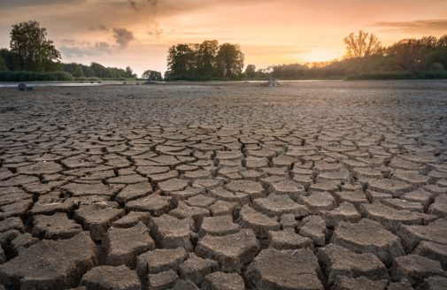 dry and cracked lake bed