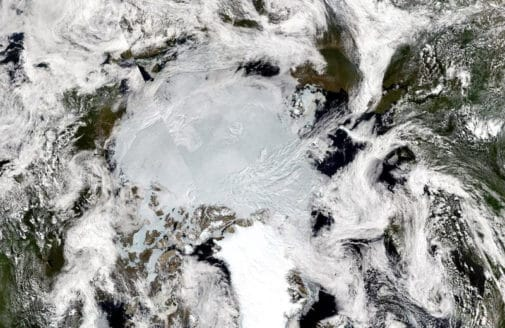 The northern hemisphere in summer, 2020. Sentinel and Landsat imagery from EOSDIS Worldview
