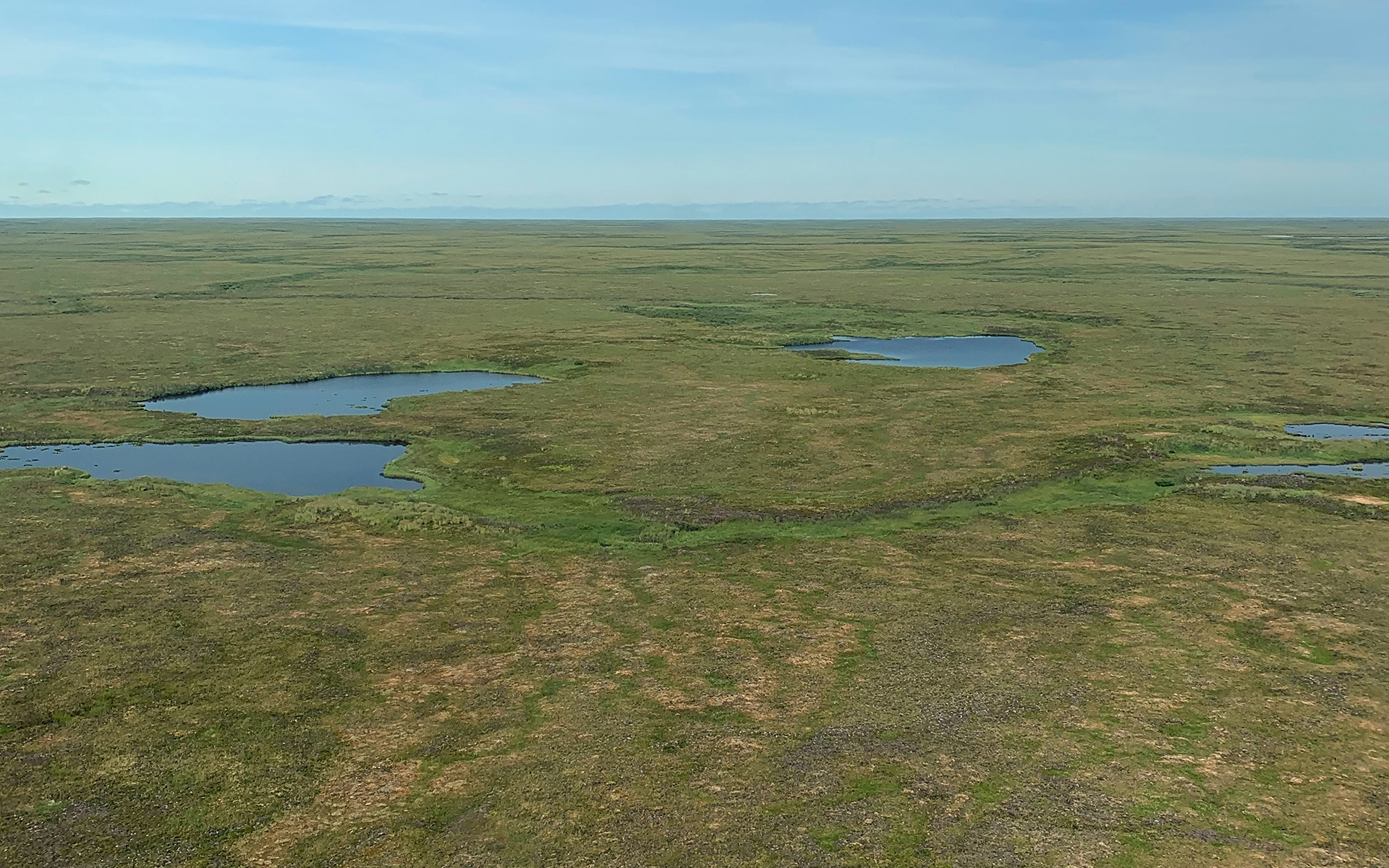 aerial view of Arctic tundra in summer