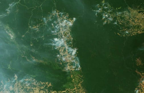 NASA Earth Observatory (MODIS Terra natural-color image, August 9, 2019 near Novo Progresso, Pará, Brazil).