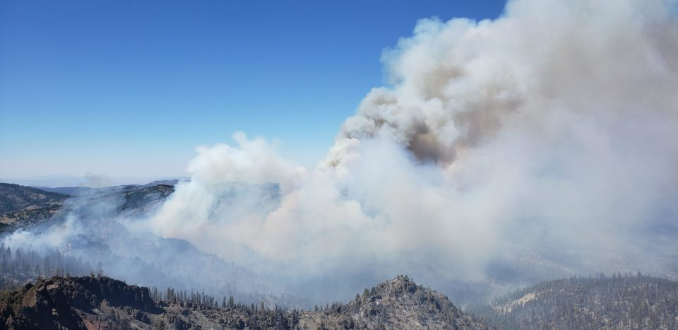Beckwourth Complex fire, northern California. / photo by Margo Dunson