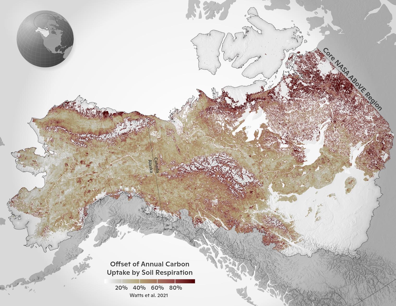 map of soil respiration offsetting carbon uptake