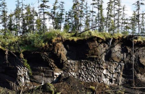 exposed permafrost